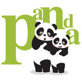 Pandas. Asia panda and a bamboo Royalty Free Stock Photography
