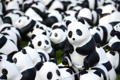 1600 pandas Imágenes de archivo libres de regalías