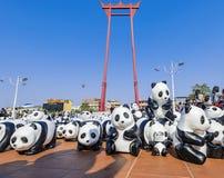 pandas Images stock