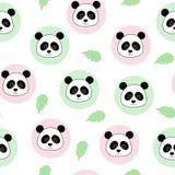 pandas Royalty-vrije Stock Afbeelding