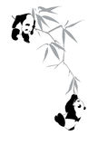 Pandas on bamboo branch. Two pandas on bamboo branch on white background Stock Image