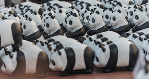 Pandas Stock Image