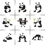 Pandas Royalty Free Stock Image
