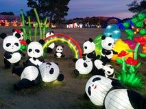 Pandas con el arco iris y las plantas en el festival de linterna chino Imágenes de archivo libres de regalías