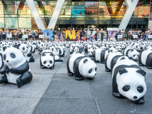 Pandas der Welttournee 1.600 in Bangkok Lizenzfreie Stockfotografie