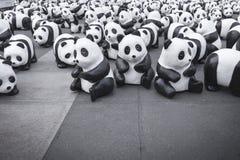 Pandas en Bangkok Fotografía de archivo