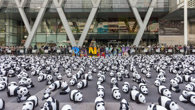 Pandas en Bangkok Imagen de archivo libre de regalías