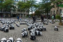 Pandas en Kiel Imagen de archivo