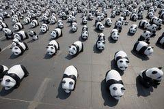 1600 pandas en Tailandia Foto de archivo