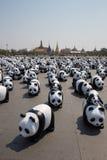 1600 pandas en Thaïlande Images libres de droits