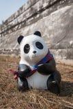 Pandas en Thaïlande Images libres de droits