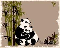 Pandas family Royalty Free Stock Photography