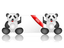 Pandas fifty percentage off. Pandas 50 percentage off on a white background Stock Image