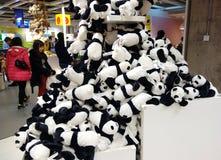 Pandas gigantes Imagen de archivo libre de regalías