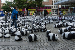 Pandas in Kiel Lizenzfreie Stockfotos