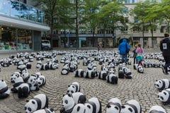 Pandas in Kiel Lizenzfreies Stockbild