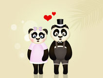 Pandas in love Royalty Free Stock Photo