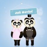 Pandas in love Royalty Free Stock Photos
