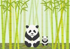 Pandas que comem o bambu Fotos de Stock Royalty Free