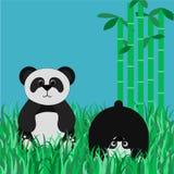 Pandas sur une clairière Image stock
