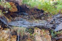 Pandav faller på Panna National Park, Madhya Pradesh, Indien Arkivbild