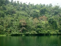 Pandin jezioro Filipiny Obrazy Royalty Free
