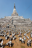 Pandor i Thailand Royaltyfri Bild