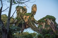 Pandora – The World of Avatar at the Animal Kingdom at Walt Disney World. Orlando, Florida: December 1, 2017: Pandora – The World of Avatar at the stock photography
