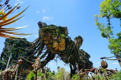 Pandora at Disney Animal Kingdom royalty free stock photos
