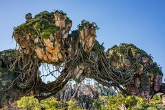Pandora – o mundo do Avatar no reino animal em Walt Disney World imagens de stock