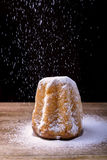 Pandoro蛋糕 库存图片