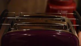 Pane affettato che tosta in tostapane elettrico stock footage