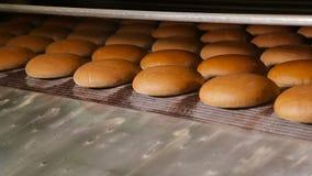 Pane al forno caldo all'uscita del forno video d archivio