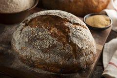 Pane antico casalingo organico del grano Fotografie Stock