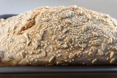 Pane bianco ancora di recente cucinato nello stampo da pane Fotografia Stock