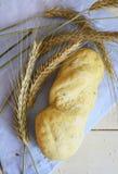Pane bianco del forno sui precedenti bianchi Fotografie Stock