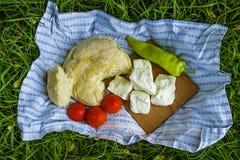 Pane casalingo, formaggio, paprica e pomodoro sull'erba Fotografia Stock Libera da Diritti
