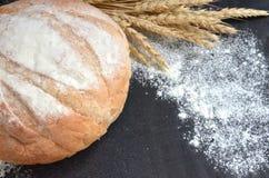Pane casalingo rotondo con le orecchie del grano e la farina sparsa su fondo nero Immagini Stock Libere da Diritti