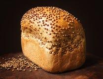 Pane con i semi di coriandolo su legno scuro Impilamento del fuoco Fotografia Stock Libera da Diritti