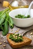 Pane con l'aglio orsino di pesto Immagini Stock Libere da Diritti