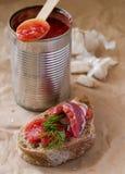 Pane con la salsa di pomodori in stagno Fotografie Stock