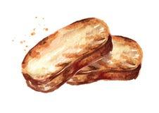 Pane cotto Tosti l'illustrazione disegnata a mano dell'acquerello, isolata su fondo bianco illustrazione di stock