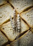 Pane croccante Fotografia Stock