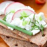 Pane croccante con formaggio ed i ravanelli Immagine Stock Libera da Diritti