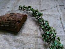 Pane di Borodino e ramoscello asciutto Fotografie Stock