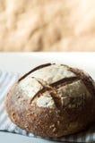 Pane di lievito naturale rustico fresco e crostoso Fotografie Stock Libere da Diritti