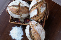 Pane di recente cotto Immagini Stock