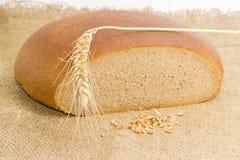 Pane di segale del grano, punta del grano e grano rotondi del grano Immagine Stock Libera da Diritti