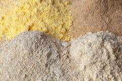 Pane differente della farina Immagine Stock