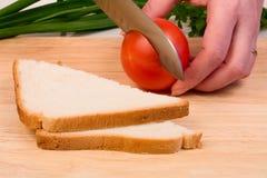 Pane e pomodoro Immagine Stock